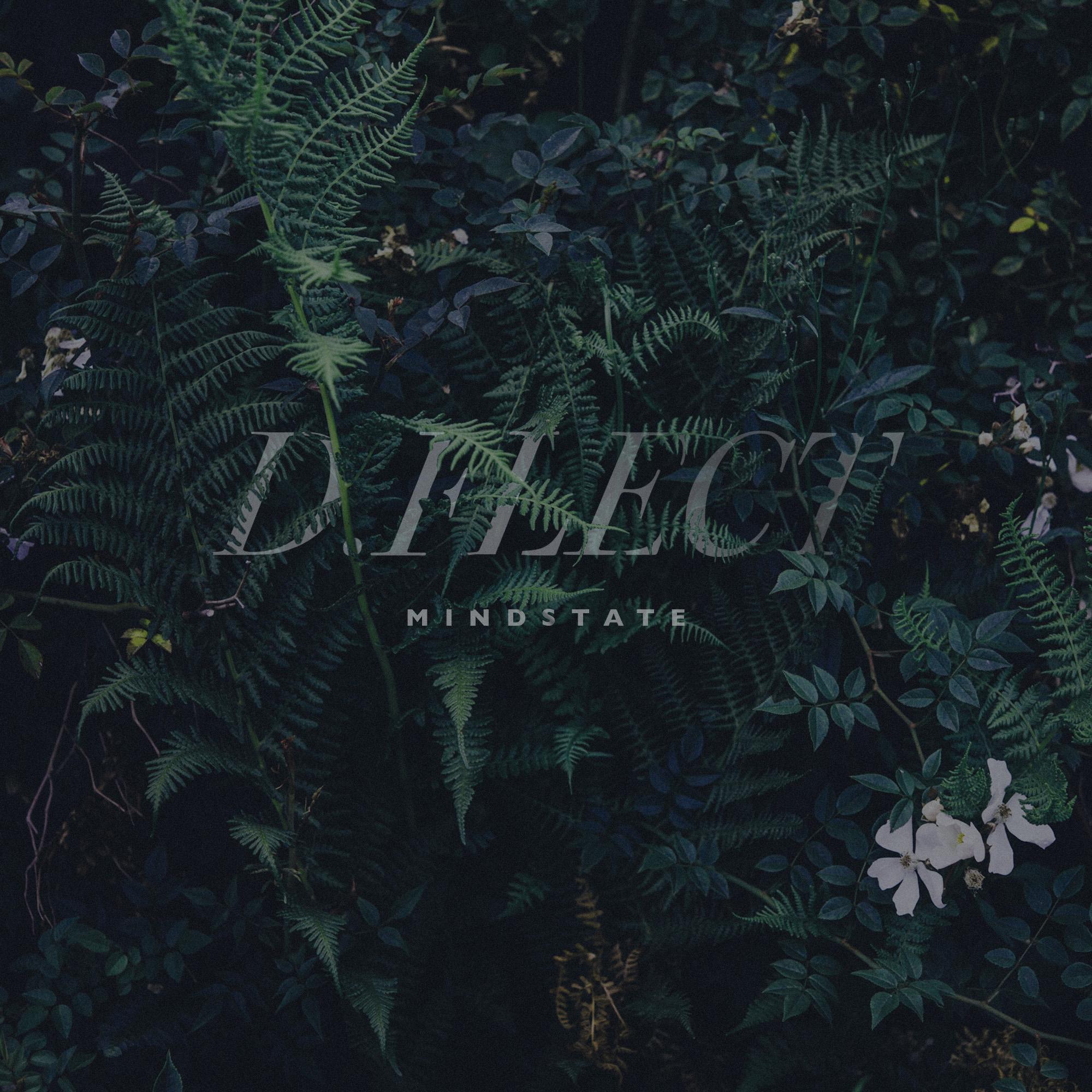 D.Flect-Mindstate